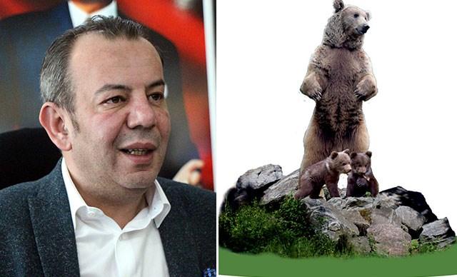 Bolu'da 10 metrelik ayı heykeli yapılacak: Belediye Başkanı Özcan'dan eleştirilere yanıt