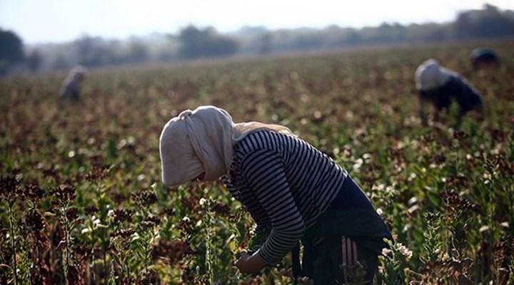 AKP'nin yanlış tarım politikaları çiftçiyi borç batağına sürükledi