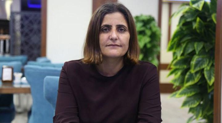 HDP'li Taşdemir: Gara'ya gitmedim, bu çok açık ve net