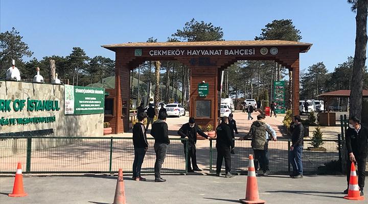 İstanbul'da hayvanat bahçesinde silahlı kavga: 2 ölü