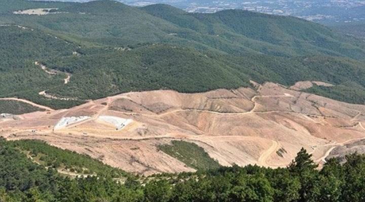 Kazdağları'nı talan eden madencileri savunan muhtar: Ben zarar konusunda garanti vermem