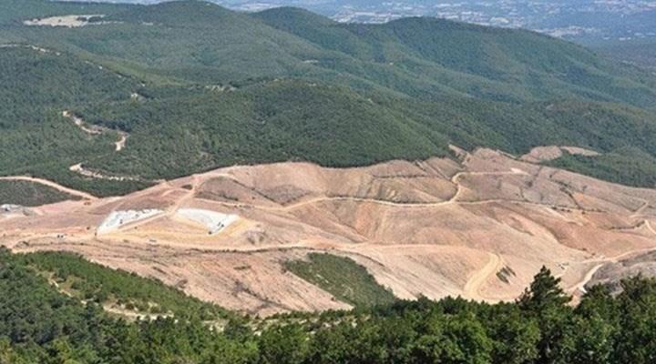 Alamos Gold'un yerli iştiraki Doğu Biga Madencilik: Kazdağları'ndan hiçbir yere gitmiyoruz