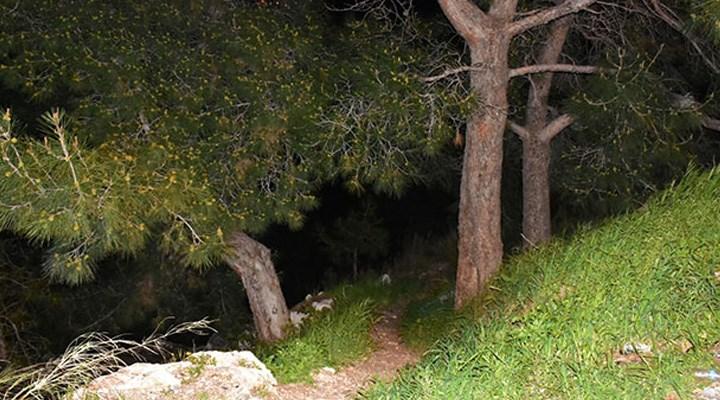 Ormanlık alanda bulunan kafatası ve kemik parçaları bulunmuştu: Yeni detaylar