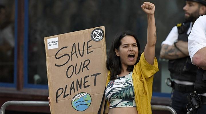 Ekosistemde felaket tablosu: Yalnızca yüzde 3 kaldı