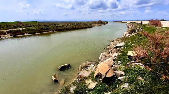 Karakoç Deresi'nin sulak alan satüsü korunacak