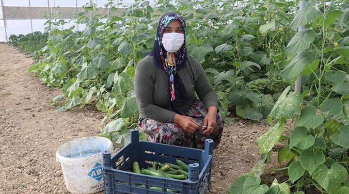 Kredi borçlusu çiftçiye yapılandırma tuzağı