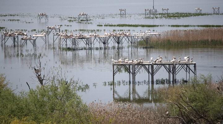 Akçay Sazlığı ve Sulak Alanı'nın 100 hektarı envanterden silindi