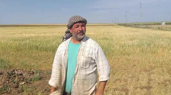 Çiftçi kuraklık batağına saplandı