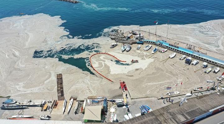 Marmara Denizi yüzeyinde müsilaj temizliğine başlandı: Bakan'dan açıklama, YÖK'ten toplantı kararı