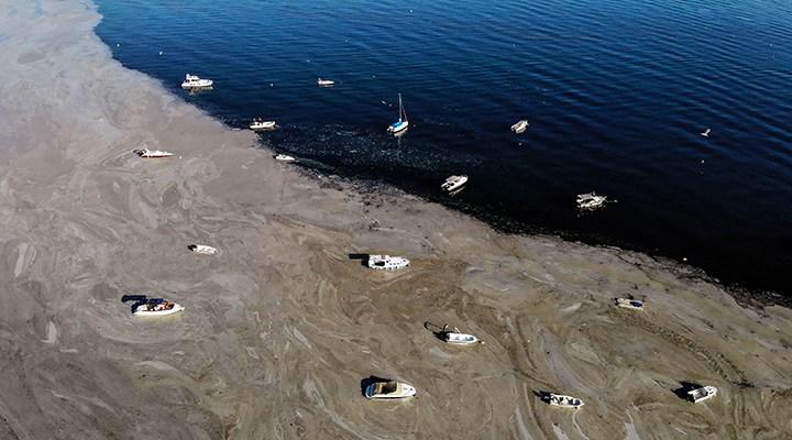 """""""Marmara Denizi'nde yüzmek cilt hastalıklarına neden olur"""""""