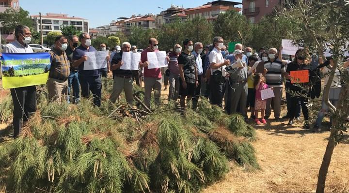 Mahalleli ağaç kesimine karşı imza kampanyası başlattı