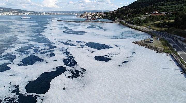 Tarihi Gelibolu Yarımadası sahilleri müsilaja teslim
