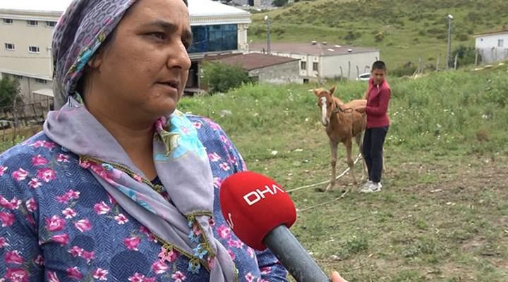 Atlarına kamyonet çarpan aileye 23 bin 467 liralık tebligat