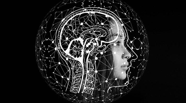 Araştırma: Fazla beyin hücresine sahip olmak, yüksek IQ'yu garantilemiyor