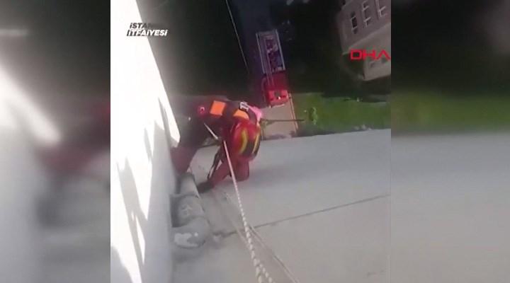 İstanbul'da papağan kurtarma operasyonu