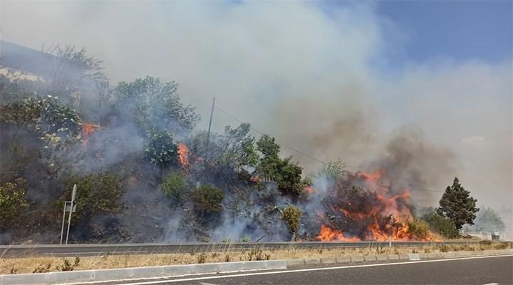 Ula'da ormanlık alanda yangın