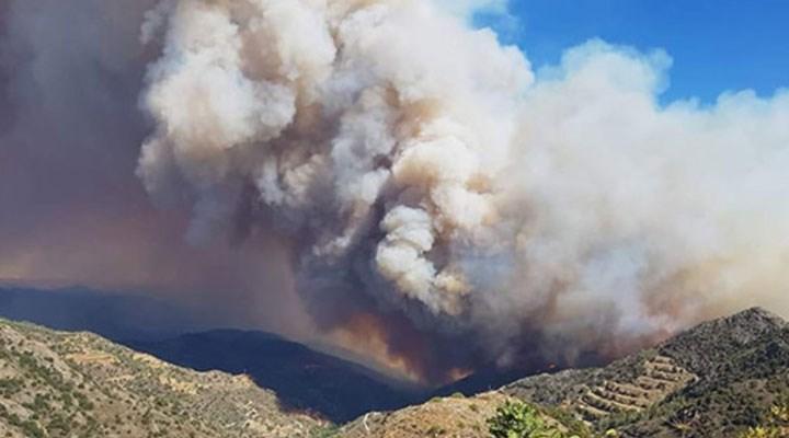 Güney Kıbrıs'ta yangın