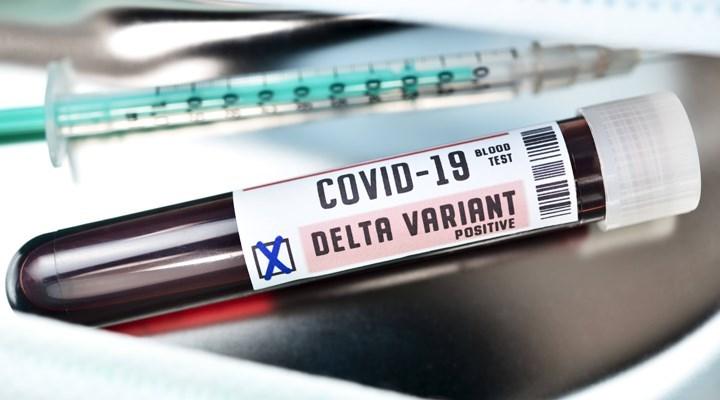 5 soruda Covid-19'un 'Delta' ve 'Delta Plus' varyantına ilişkin merak edilenler