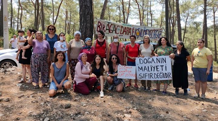 Köylüler bayramı ağaçlar için nöbet tutarak geçirdi: Akbelen direnişine büyük destek