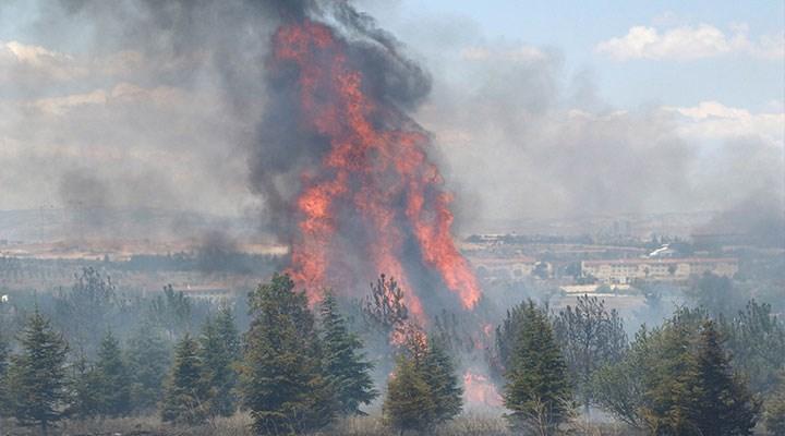Atatürk Orman Çiftliği yangını şüphelisi, Adli Tıp Kurumu'na sevk edildi