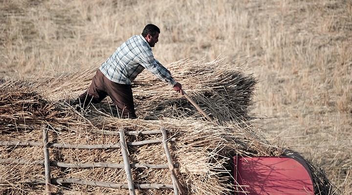 """""""Üretici, arpa ve saman bulamıyor"""""""