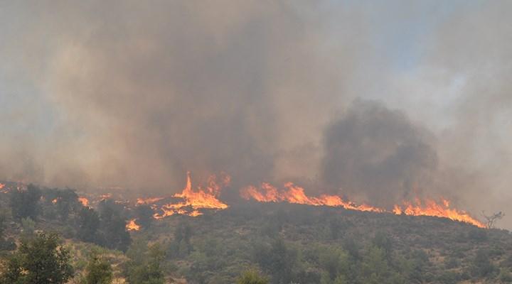 111 yangın kontrol altında, 3 ilde 6 yangın sürüyor