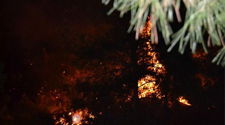14 bin orman yangınından yarısının nedeni belirsiz