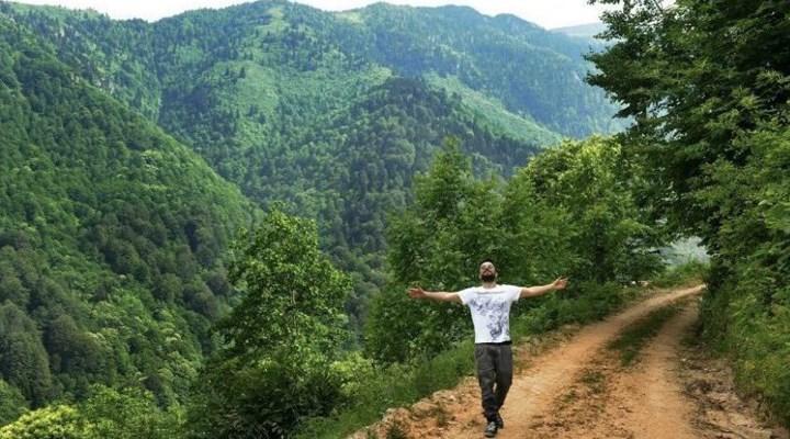 Tarkan'dan ormanları ranta açan düzenlemeye tepki