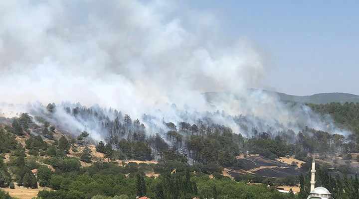Uşak'taki orman yangını kontrol altına alındı: Bir kişi gözaltında