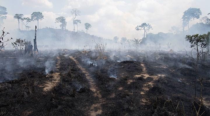 Küresel ısıtma tehdit ediyor