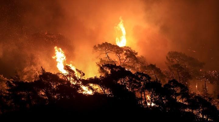 BM'den raporu: Nadir hava olayları sıklaşacak, hemen harekete geçilmezse geri dönülemez