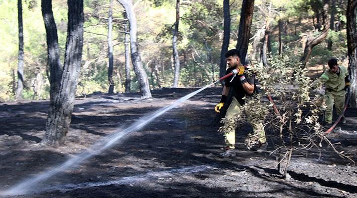 Uşak'taki orman yangını kontrol altına alındı: 2,5 hektarlık alan zarar gördü