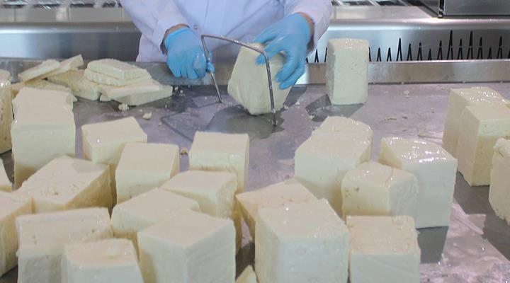 Uzmanından 'kazein' uyarısı: 'İçinde bir damla süt olmayan peynirler piyasada cirit atıyor'