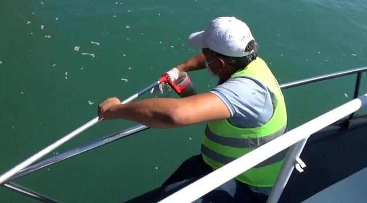 Mersin'de denizi kirleten gemiye 1 milyon 490 bin TL ceza