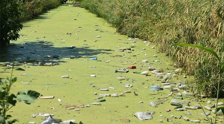 Bayır Deresi kirlilikten yeşile büründü, derenin üzeri çöple doldu