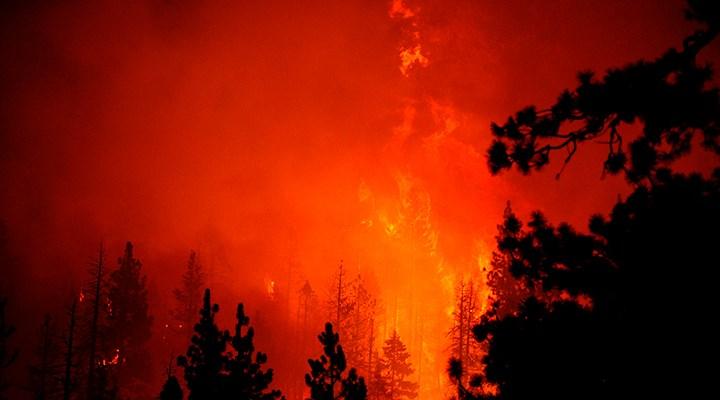 Caldor yangını ABD'de 756 kilometrekare alana yayıldı