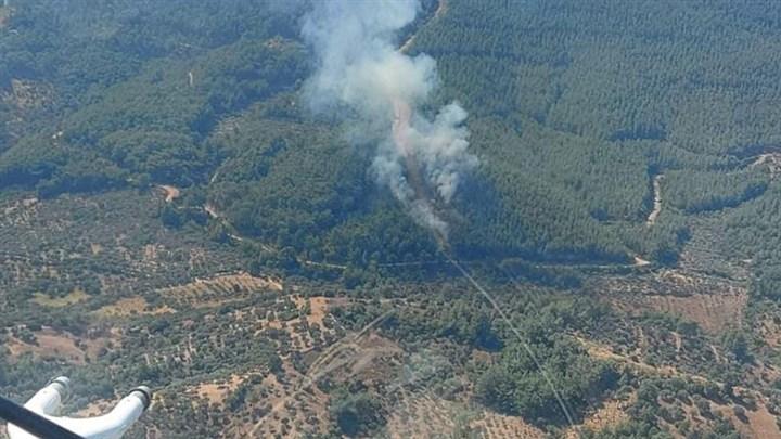 İzmir'in Kemalpaşa ilçesinde orman yangını çıktı