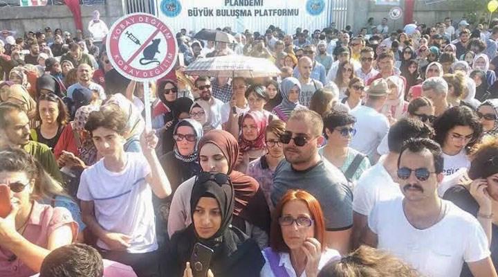 AKP iktidarı aşı karşıtlığına izin veriyor