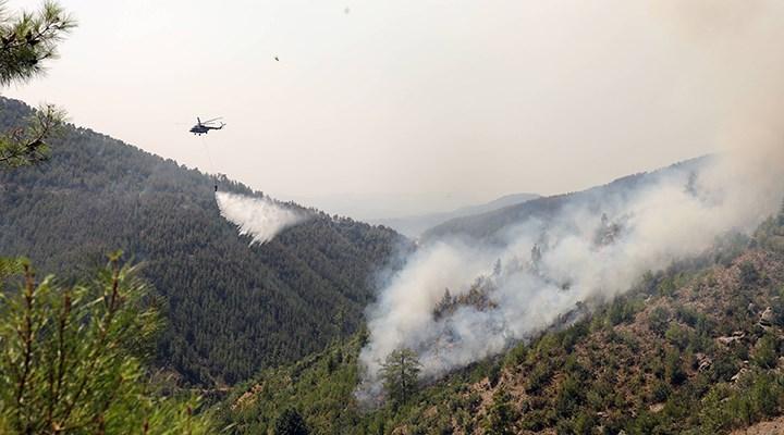 Muğla'daki yangınların bilançosu: 60 bin hektar zarar gördü