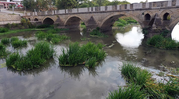 Kuraklık: Tunca Nehri yatağında ot öbekleri oluştu