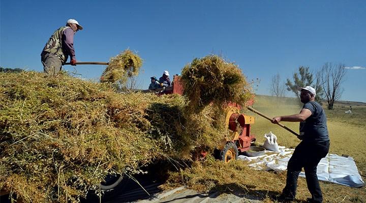 TÜİK'e göre gübre fiyatındaki artış yüzde 62, çiftçiye göre yüzde 150