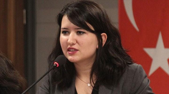 CHP'li Gökçen'den Erasmus hibelerinin azaltılmasına tepki