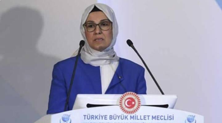 AKP'li vekilden Bülent Arınç'a: Dindarlar, ülkesine midesinden değil, gönülden bağlıdır