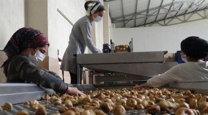 Kuru incirin tanesi en az 3 liradan satılıyor