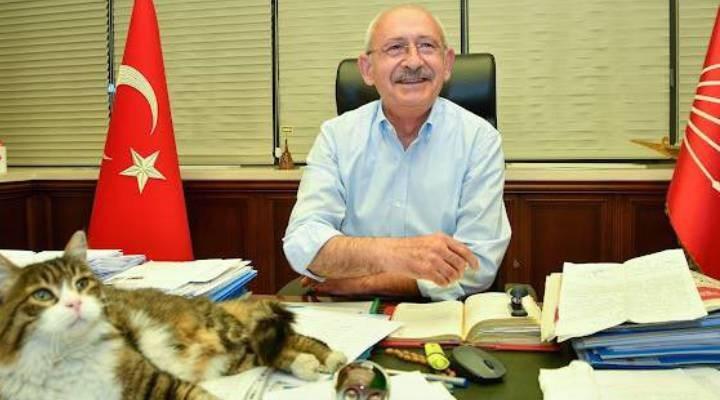 """Kılıçdaroğlu'ndan """"kedili"""" mesaj: Gelmekte olan güzel günlere bakıyoruzdur"""