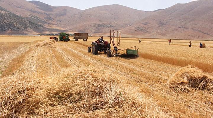 Tarım arazileri üretim dışına çıktı