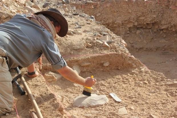 homo-erectus-un-yok-olmasinda-tembellik-rol-oynadi-498703-1.