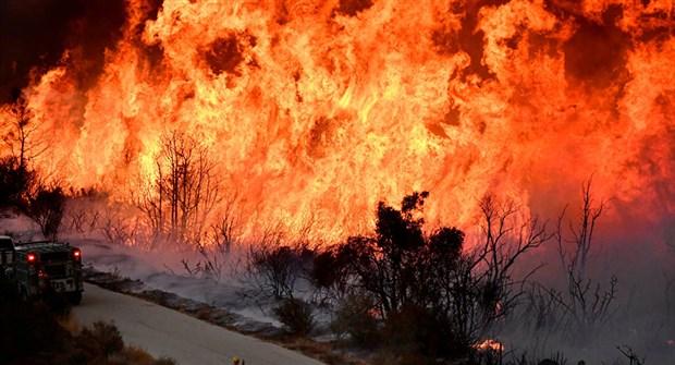 iklim-degisikligi-orman-yanginlarini-artirdi-505209-1.