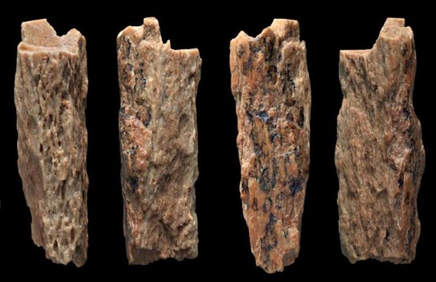 melez-insanin-bulundugu-magarada-yeni-kemikler-bulundu-513306-1.