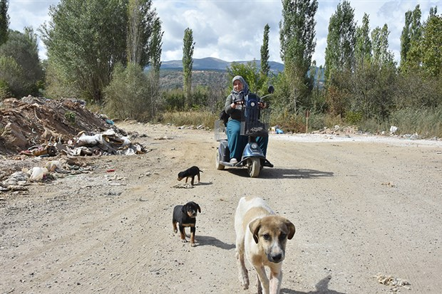 rukiye-bagci-15-yildir-sokak-hayvanlarini-besliyor-517638-1.